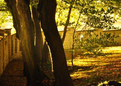 ogród gardziecnicki