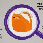 Zbadaj koty w mieście – program Uniwersyteckiego Centrum Wolontariatu