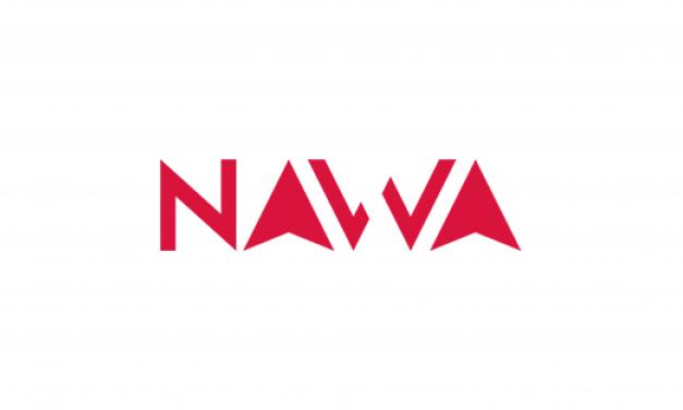 Stypendia naukowe NAWA